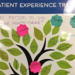 What Matters to You.Vancouver Island.Patient Experience Tree